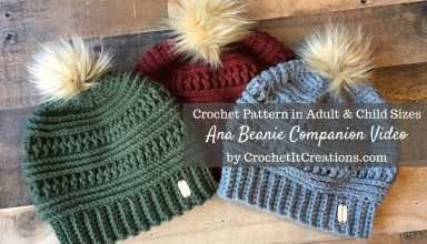 Ana Beanie Crochet Pattern Companion Video - image 1556839766_maxresdefault-384x220 on https://knitting-crocheting-yarn.com